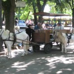 Villa Borghese park activities
