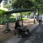 musician in Villa Borghese